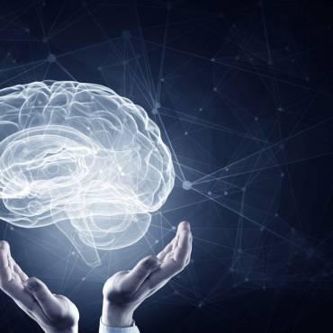 General Brain Health
